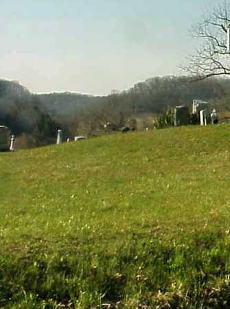 NELSON, CHLOE - Meigs County, Ohio | CHLOE NELSON - Ohio Gravestone Photos