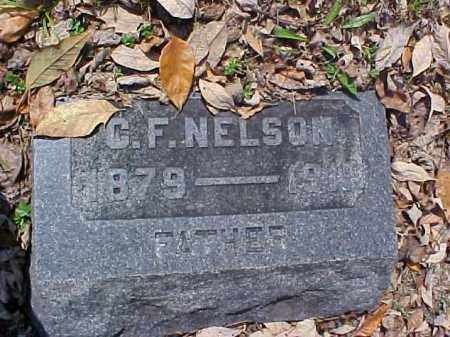NELSON, C. F. - Meigs County, Ohio | C. F. NELSON - Ohio Gravestone Photos