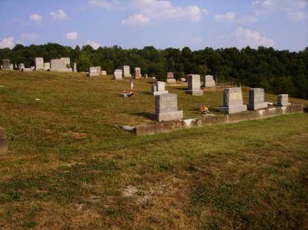 NELSON, CEMETERY - VIEW 1 - Meigs County, Ohio | CEMETERY - VIEW 1 NELSON - Ohio Gravestone Photos