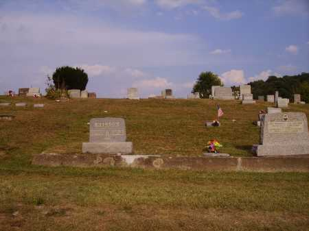 NELSON, CEMETERY - VIEW 3 - Meigs County, Ohio   CEMETERY - VIEW 3 NELSON - Ohio Gravestone Photos