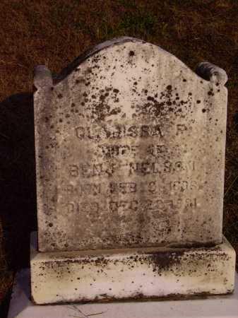 NELSON, CLARISSA P. - Meigs County, Ohio | CLARISSA P. NELSON - Ohio Gravestone Photos
