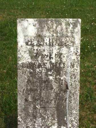 NELSON, CLARINDA - Meigs County, Ohio | CLARINDA NELSON - Ohio Gravestone Photos
