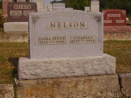 NELSON, CHARLES - Meigs County, Ohio | CHARLES NELSON - Ohio Gravestone Photos