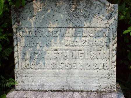 NELSON, ELIZABETH - Meigs County, Ohio | ELIZABETH NELSON - Ohio Gravestone Photos