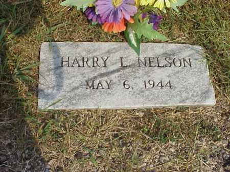 NELSON, HARRY L. - Meigs County, Ohio | HARRY L. NELSON - Ohio Gravestone Photos
