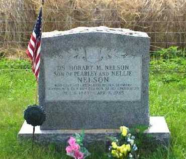 NELSON, HOBART M. - Meigs County, Ohio | HOBART M. NELSON - Ohio Gravestone Photos