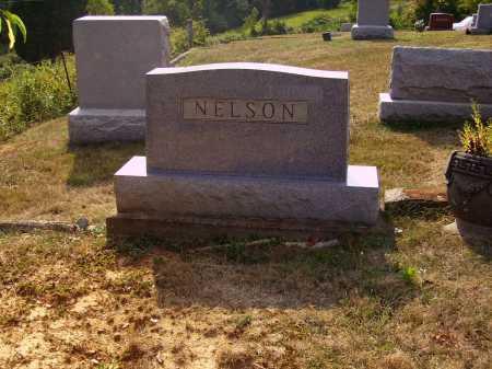 NELSON, MONUMENT - Meigs County, Ohio | MONUMENT NELSON - Ohio Gravestone Photos