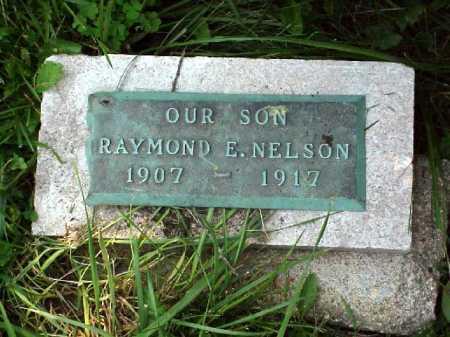 NELSON, RAYMOND E. - Meigs County, Ohio   RAYMOND E. NELSON - Ohio Gravestone Photos