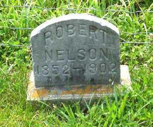 NELSON, ROBERT - Meigs County, Ohio | ROBERT NELSON - Ohio Gravestone Photos