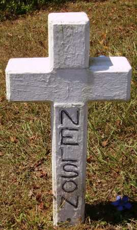 NELSON, UNKNOWN - Meigs County, Ohio   UNKNOWN NELSON - Ohio Gravestone Photos
