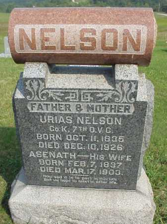 NELSON, ASENATH - Meigs County, Ohio | ASENATH NELSON - Ohio Gravestone Photos
