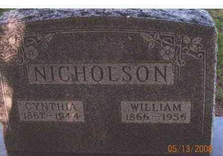 NICHOLSON, WILLIAM - Meigs County, Ohio | WILLIAM NICHOLSON - Ohio Gravestone Photos