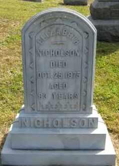 NICHOLSON, ELIZABETH - Meigs County, Ohio   ELIZABETH NICHOLSON - Ohio Gravestone Photos
