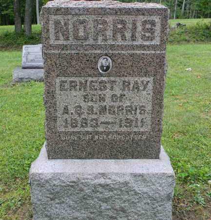 NORRIS, ERNEST RAY - Meigs County, Ohio | ERNEST RAY NORRIS - Ohio Gravestone Photos
