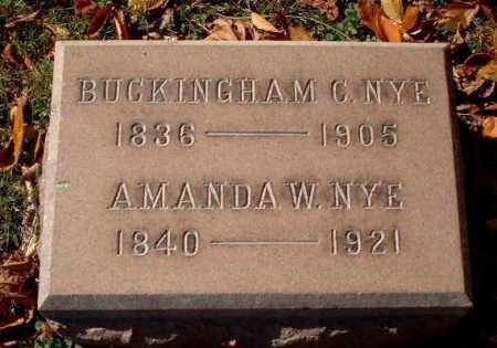 WILLIAMSON NYE, AMANDA - Meigs County, Ohio | AMANDA WILLIAMSON NYE - Ohio Gravestone Photos