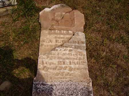 OGDIN, JOHN - Meigs County, Ohio | JOHN OGDIN - Ohio Gravestone Photos