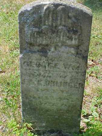 OHLINGER, GEORGE WILLIAM - Meigs County, Ohio | GEORGE WILLIAM OHLINGER - Ohio Gravestone Photos