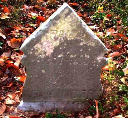OHLINGER, PAUL - Meigs County, Ohio | PAUL OHLINGER - Ohio Gravestone Photos