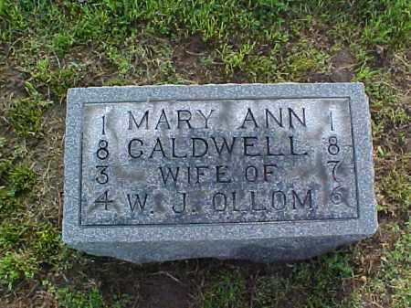 OLLOM, MARY ANN - Meigs County, Ohio | MARY ANN OLLOM - Ohio Gravestone Photos