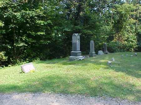 OVERVIEW, BEECH GROVE - Meigs County, Ohio | BEECH GROVE OVERVIEW - Ohio Gravestone Photos