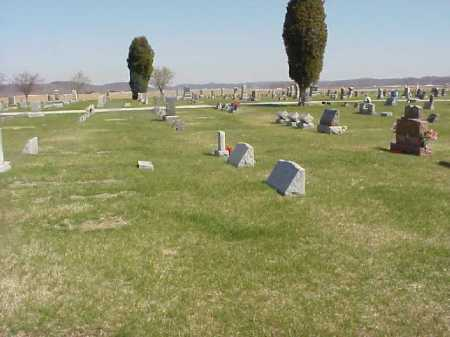 OVERVIEW, LETART CEMETERY - Meigs County, Ohio | LETART CEMETERY OVERVIEW - Ohio Gravestone Photos
