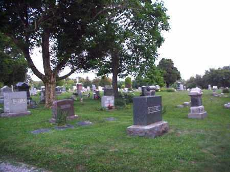 WELLS, CEMETERY - OVERVIEW - Meigs County, Ohio | CEMETERY - OVERVIEW WELLS - Ohio Gravestone Photos