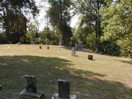 PAGEVILLE, OVERVIEW 2 - Meigs County, Ohio | OVERVIEW 2 PAGEVILLE - Ohio Gravestone Photos