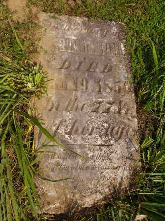 PARKER, ELIZABETH - Meigs County, Ohio | ELIZABETH PARKER - Ohio Gravestone Photos