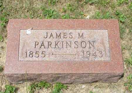 PARKINSON, JAMES M. - Meigs County, Ohio   JAMES M. PARKINSON - Ohio Gravestone Photos