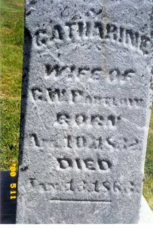 PARTLOW, CATHERINE - Meigs County, Ohio   CATHERINE PARTLOW - Ohio Gravestone Photos