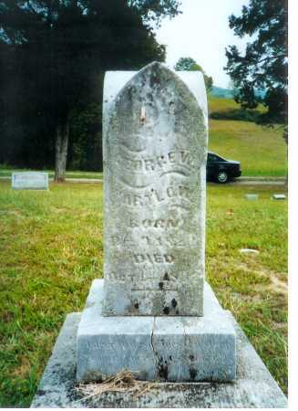 PARTLOW, GEORGE W. - Meigs County, Ohio | GEORGE W. PARTLOW - Ohio Gravestone Photos