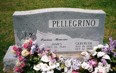 PELLEGRINO, JAMES A. - Meigs County, Ohio | JAMES A. PELLEGRINO - Ohio Gravestone Photos