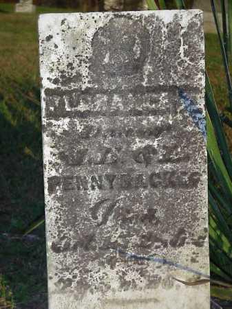 PENNYBACKER, FLORECNE E. - Meigs County, Ohio   FLORECNE E. PENNYBACKER - Ohio Gravestone Photos