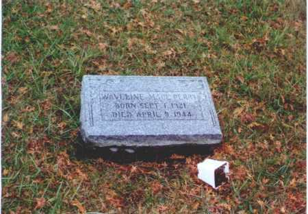 PERRY, WAVELINE - Meigs County, Ohio | WAVELINE PERRY - Ohio Gravestone Photos