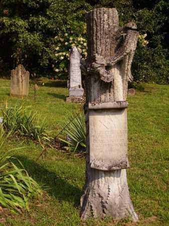 PHETTEPLACE, ANSON M. MONUMENT - Meigs County, Ohio | ANSON M. MONUMENT PHETTEPLACE - Ohio Gravestone Photos