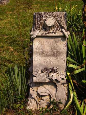 STRONG PHETTEPLACE, SOPHIA S. - Meigs County, Ohio | SOPHIA S. STRONG PHETTEPLACE - Ohio Gravestone Photos