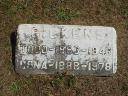 PICKENS, LENA - Meigs County, Ohio | LENA PICKENS - Ohio Gravestone Photos