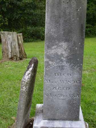 PILES, GEORGE H. [HENRY] - Meigs County, Ohio   GEORGE H. [HENRY] PILES - Ohio Gravestone Photos