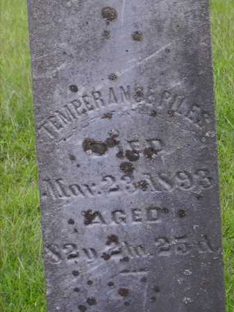 HENDRIX/HENDRICKS PILES, TEMPERANCE - Meigs County, Ohio | TEMPERANCE HENDRIX/HENDRICKS PILES - Ohio Gravestone Photos