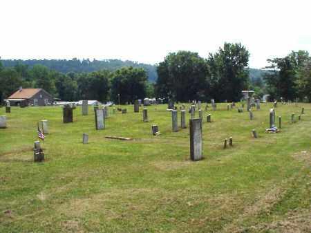 PIONEER, CEMETERY 1 - Meigs County, Ohio | CEMETERY 1 PIONEER - Ohio Gravestone Photos