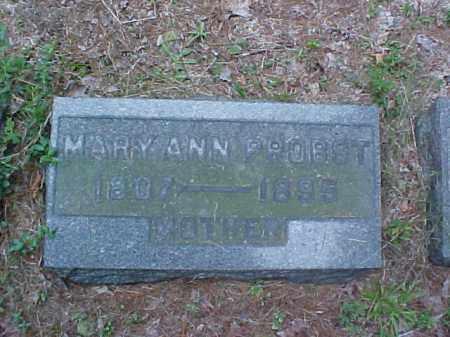 PROBST, MARY ANN - Meigs County, Ohio | MARY ANN PROBST - Ohio Gravestone Photos