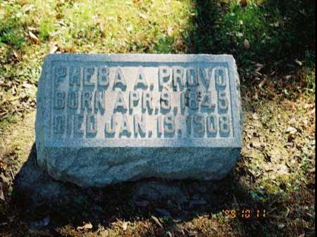 PROVO, PHEBA A. - Meigs County, Ohio | PHEBA A. PROVO - Ohio Gravestone Photos