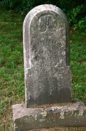 PULLINS, ALLEN - Meigs County, Ohio   ALLEN PULLINS - Ohio Gravestone Photos