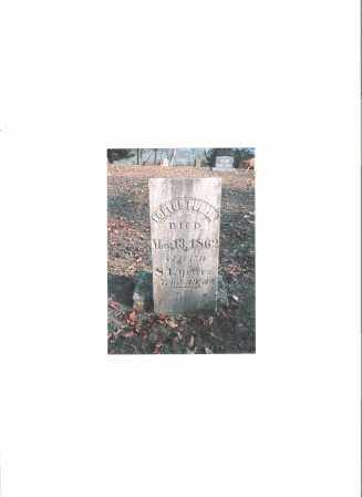 PULLINS, LOFTUS - Meigs County, Ohio   LOFTUS PULLINS - Ohio Gravestone Photos