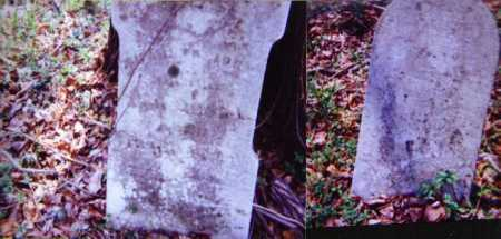 WEBSTER, JANE - Meigs County, Ohio | JANE WEBSTER - Ohio Gravestone Photos