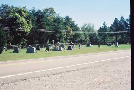 RANDLOPH OVERVIEW - #4, CEMETERY - Meigs County, Ohio | CEMETERY RANDLOPH OVERVIEW - #4 - Ohio Gravestone Photos