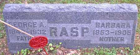 RASP, BARBARA - Meigs County, Ohio | BARBARA RASP - Ohio Gravestone Photos
