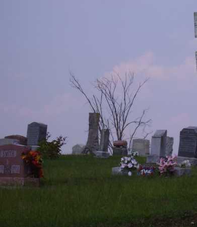 RAWLINGS, FLORINDA - Meigs County, Ohio | FLORINDA RAWLINGS - Ohio Gravestone Photos