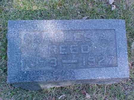 REED, CHARLES - Meigs County, Ohio | CHARLES REED - Ohio Gravestone Photos
