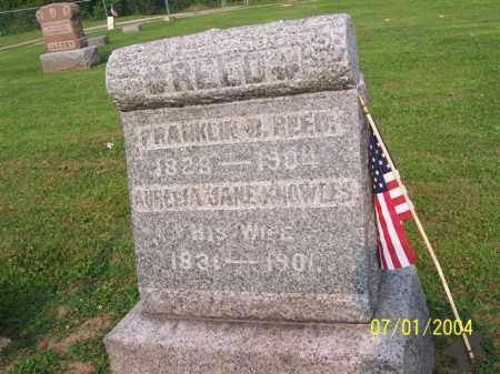 REED, FRANKLIN - Meigs County, Ohio | FRANKLIN REED - Ohio Gravestone Photos